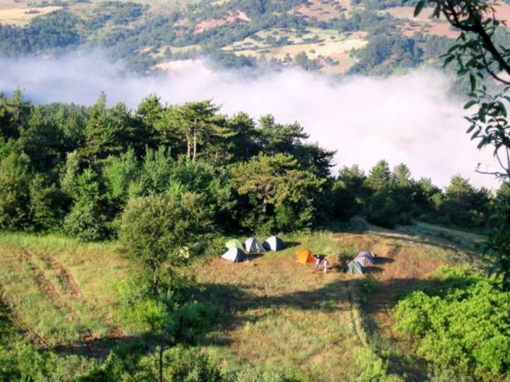 Halk Ekmek Sektöründen kamp alanı